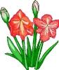 bloemen_468