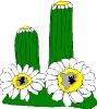 bloemen_471