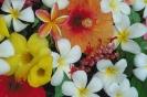 bloemen_489