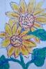 bloemen_498