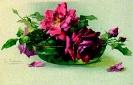 bloemen_505