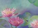 bloemen_56