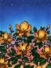 bloemen_59