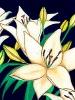 bloemen_63