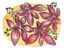 bloemen_72