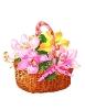 bloemen_75