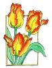 bloemen_79