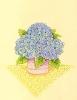 bloemen_81