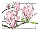 bloemen_96