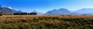 landschap_166