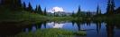 landschap_173
