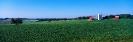 landschap_67