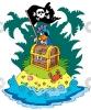 piraat_100