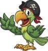 piraat_84
