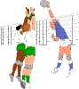 sport_230